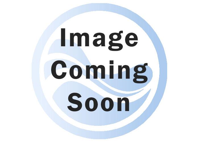 Lightspeed Image ID: 40852